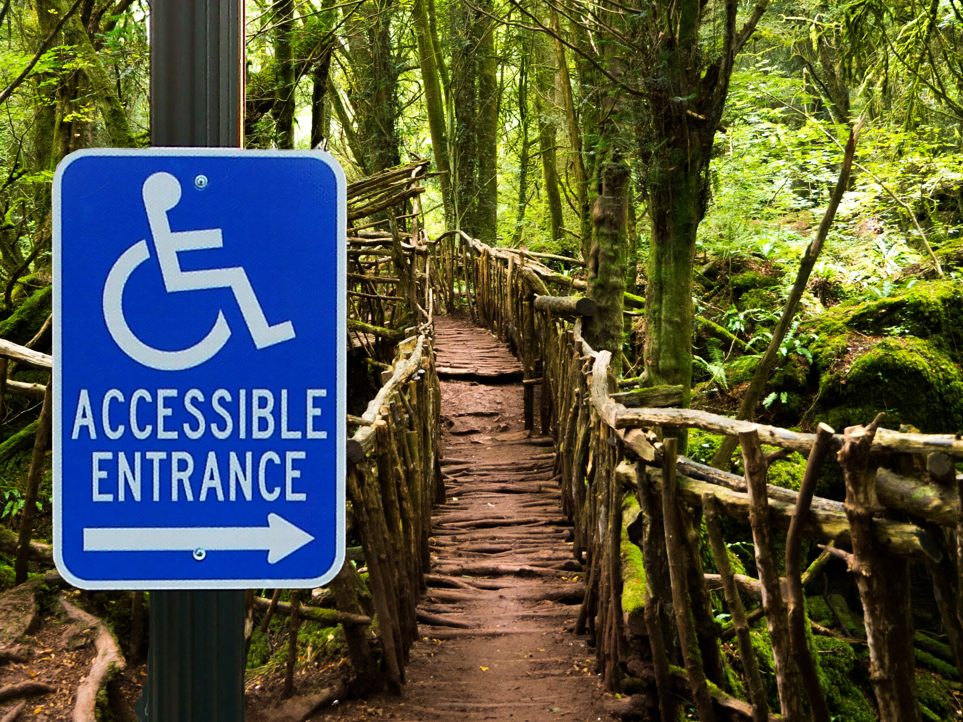 Inaccessible Accessibility case study